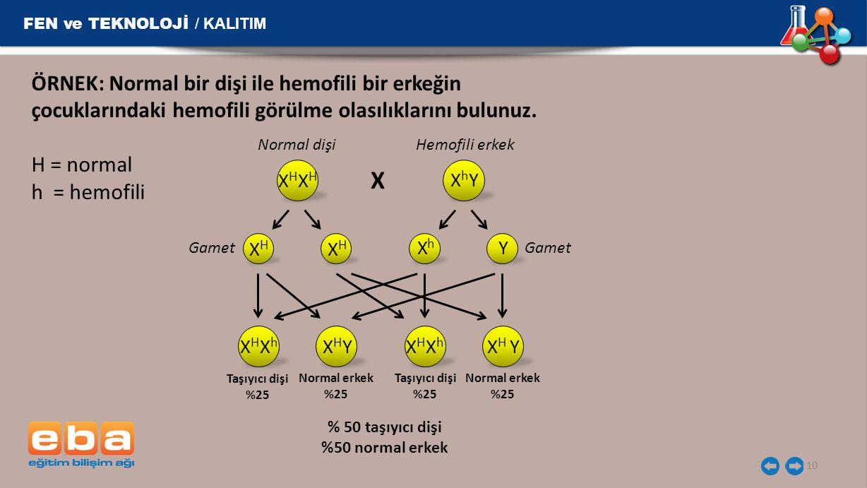 FEN ve TEKNOLOJİ / KALITIM 10 ÖRNEK: Normal bir dişi ile hemofili bir erkeğin çocuklarındaki hemofili görülme olasılıklarını bulunuz. H = normal h = h