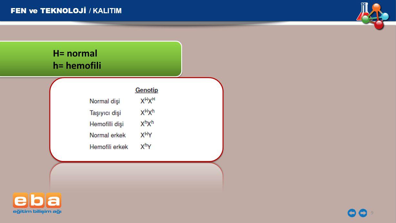 FEN ve TEKNOLOJİ / KALITIM 9 H= normal h= hemofili