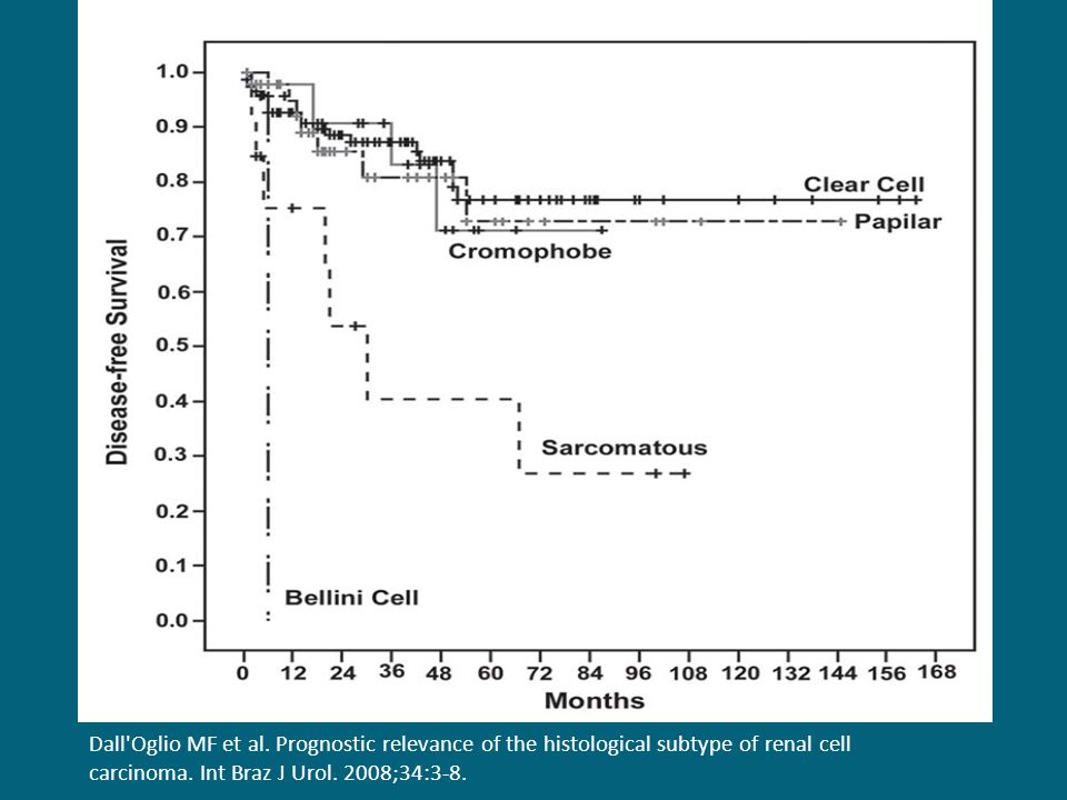 Dall'Oglio MF et al. Prognostic relevance of the histological subtype of renal cell carcinoma. Int Braz J Urol. 2008;34:3-8.