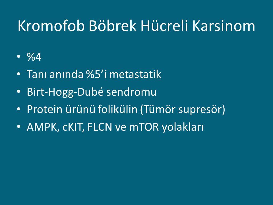 Kromofob Böbrek Hücreli Karsinom %4 Tanı anında %5'i metastatik Birt-Hogg-Dubé sendromu Protein ürünü folikülin (Tümör supresör) AMPK, cKIT, FLCN ve mTOR yolakları