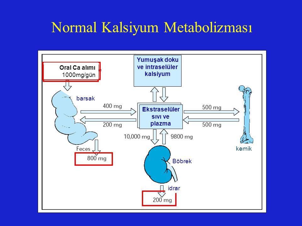 Yumuşak doku ve intraselüler kalsiyum Ekstraselüler sıvı ve plazma kemik Böbrek barsak Normal Kalsiyum Metabolizması Oral Ca alımı 1000mg/gün idrar