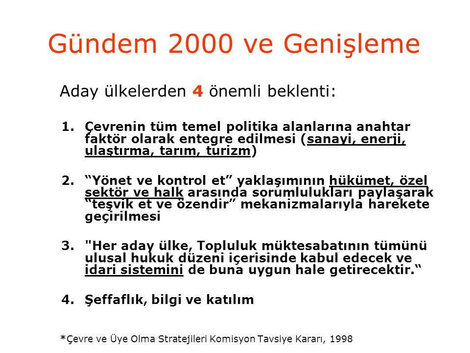 Topluluk Ajansları Avrupa Birliği'nde ortak politikalar çerçevesinde karşılaşılan sorunlara farklı yöntemlerle çözüm arayan ve Birliğin faaliyetlerine ademi merkeziyetçi bir yaklaşım getiren ajanslar, AB hukukuna göre tüzel kişilik statüsündedir Türkiye'nin, adaylığının teyit edildiği 10-11 Aralık 1999 tarihli Helsinki Zirvesi'nde Topluluk ajanslarına katılabileceği belirtilmiştir.