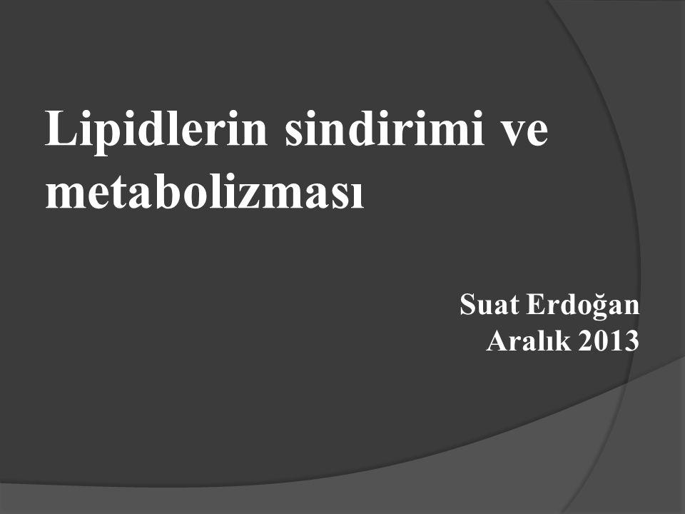 Lipidlerin sindirimi ve metabolizması Suat Erdoğan Aralık 2013
