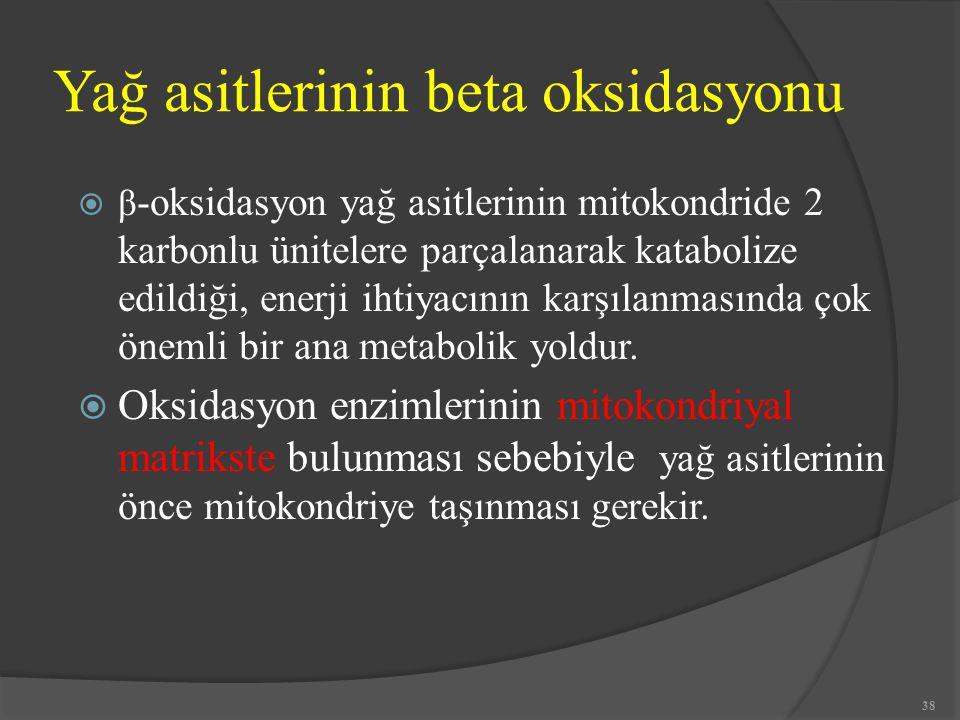 Yağ asitlerinin beta oksidasyonu  β -oksidasyon yağ asitlerinin mitokondride 2 karbonlu ünitelere parçalanarak katabolize edildiği, enerji ihtiyacını