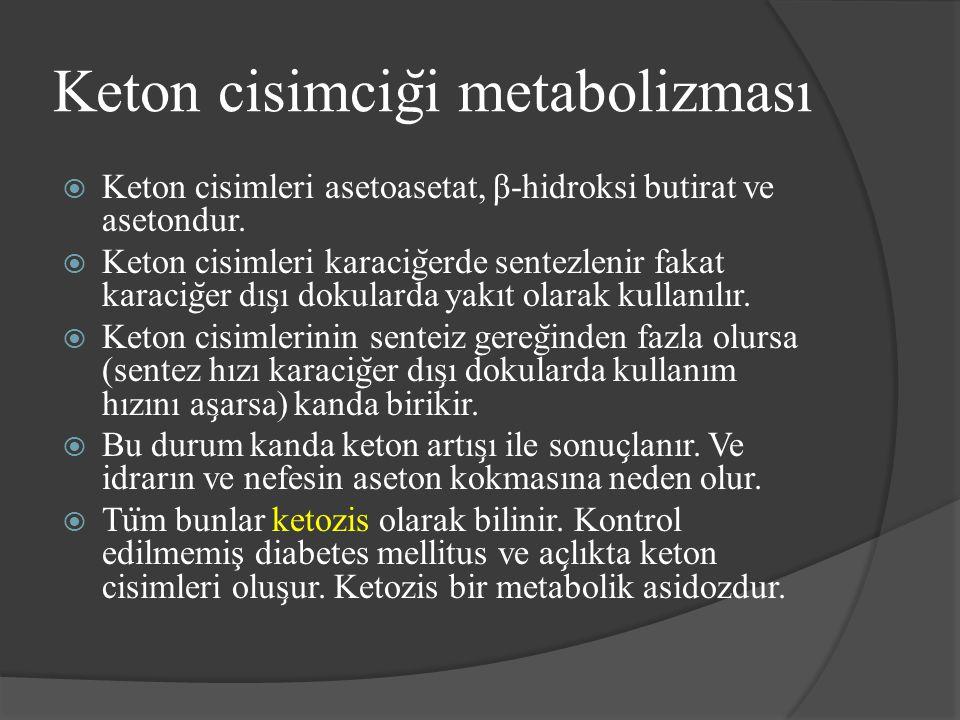 Keton cisimcig ̆ i metabolizması  Keton cisimleri asetoasetat, β-hidroksi butirat ve asetondur.  Keton cisimleri karacig ̆ erde sentezlenir fakat ka