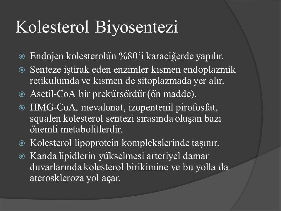 Kolesterol Biyosentezi  Endojen kolesterolu ̈ n %80'i karacig ̆ erde yapılır.  Senteze is ̧ tirak eden enzimler kısmen endoplazmik retikulumda ve kı