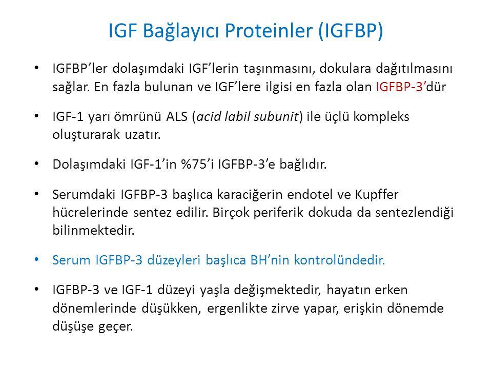 IGF Bağlayıcı Proteinler (IGFBP) IGFBP'ler dolaşımdaki IGF'lerin taşınmasını, dokulara dağıtılmasını sağlar. En fazla bulunan ve IGF'lere ilgisi en fa
