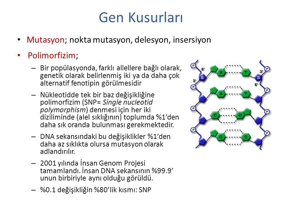 Gen Kusurları Polimorfizim; – Bir popülasyonda, farklı allellere bağlı olarak, genetik olarak belirlenmiş iki ya da daha çok alternatif fenotipin görü