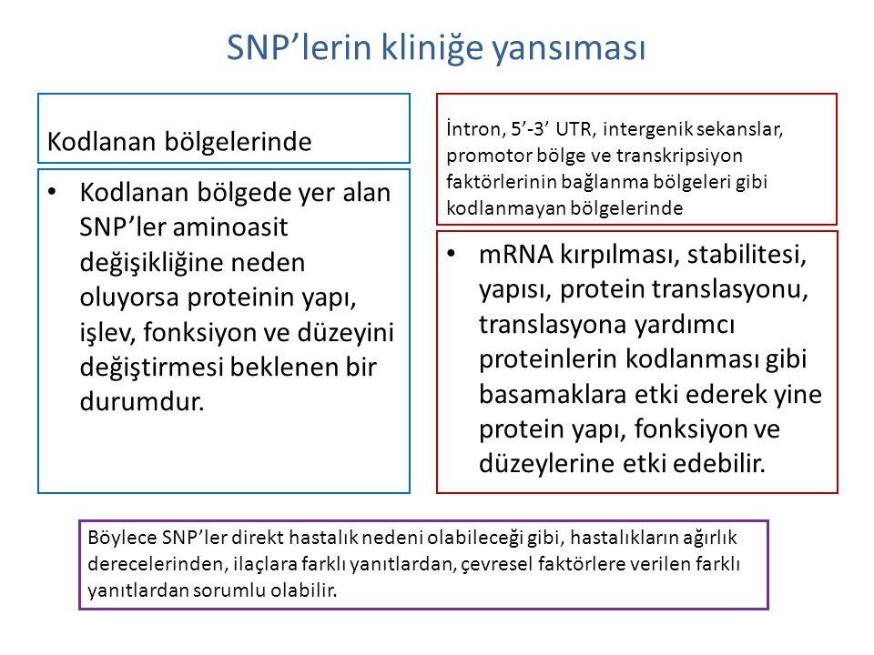 SNP'lerin kliniğe yansıması Kodlanan bölgelerinde Kodlanan bölgede yer alan SNP'ler aminoasit değişikliğine neden oluyorsa proteinin yapı, işlev, fonk