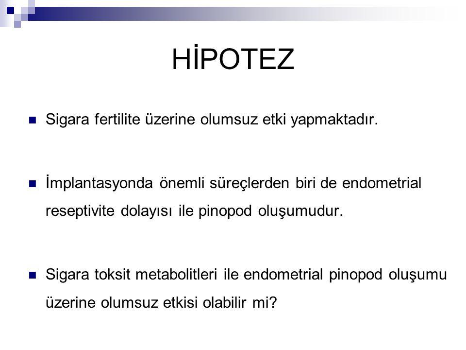 HİPOTEZ Sigara fertilite üzerine olumsuz etki yapmaktadır.