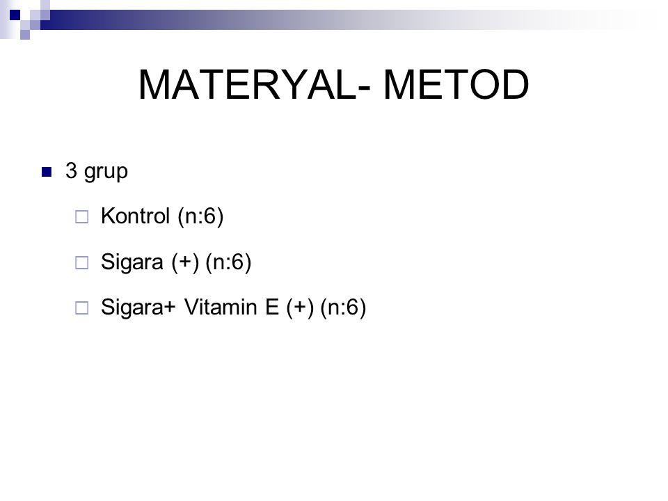 MATERYAL- METOD 3 grup  Kontrol (n:6)  Sigara (+) (n:6)  Sigara+ Vitamin E (+) (n:6)