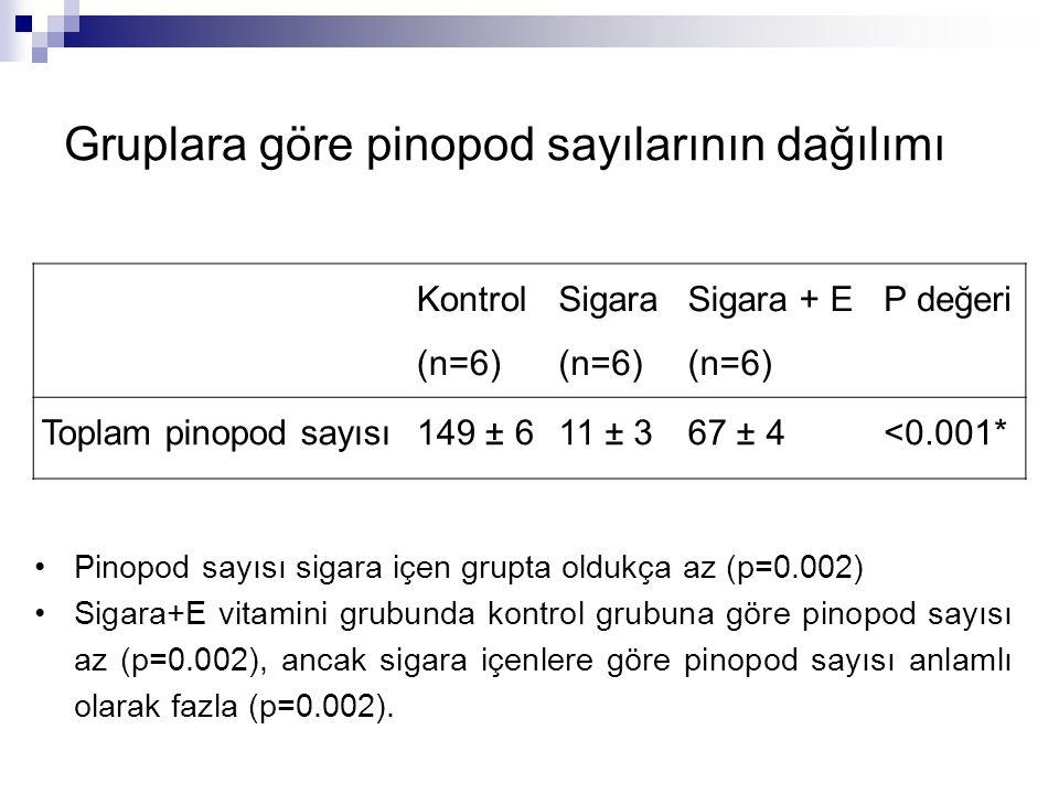 Kontrol (n=6) Sigara (n=6) Sigara + E (n=6) P değeri Toplam pinopod sayısı149 ± 611 ± 367 ± 4<0.001* Pinopod sayısı sigara içen grupta oldukça az (p=0.002) Sigara+E vitamini grubunda kontrol grubuna göre pinopod sayısı az (p=0.002), ancak sigara içenlere göre pinopod sayısı anlamlı olarak fazla (p=0.002).