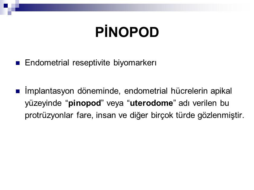 PİNOPOD Endometrial reseptivite biyomarkerı İmplantasyon döneminde, endometrial hücrelerin apikal yüzeyinde pinopod veya uterodome adı verilen bu protrüzyonlar fare, insan ve diğer birçok türde gözlenmiştir.