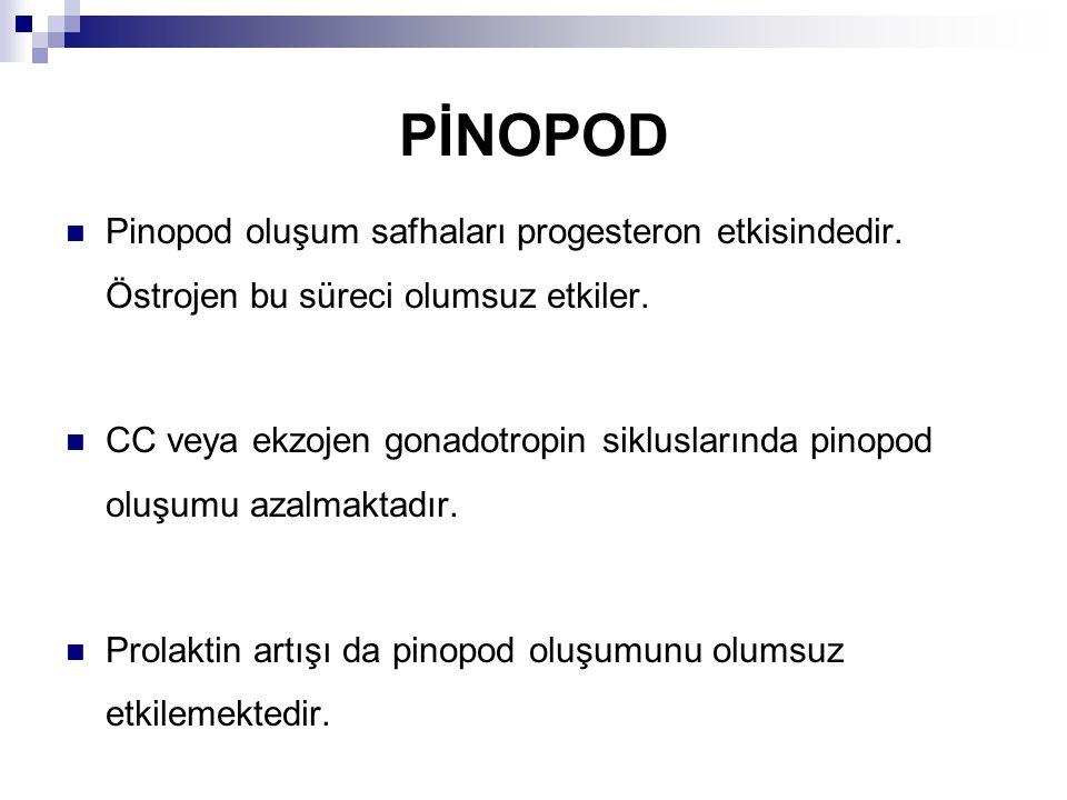 PİNOPOD Pinopod oluşum safhaları progesteron etkisindedir.