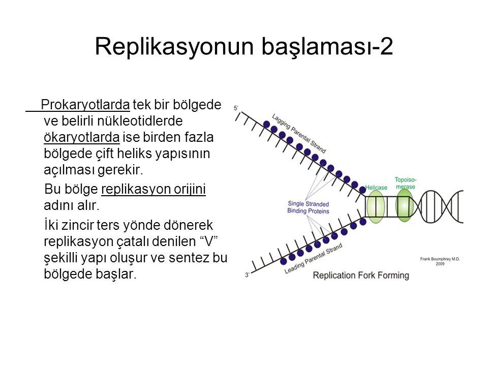 Replikasyonun başlaması-2 Prokaryotlarda tek bir bölgede ve belirli nükleotidlerde ökaryotlarda ise birden fazla bölgede çift heliks yapısının açılması gerekir.