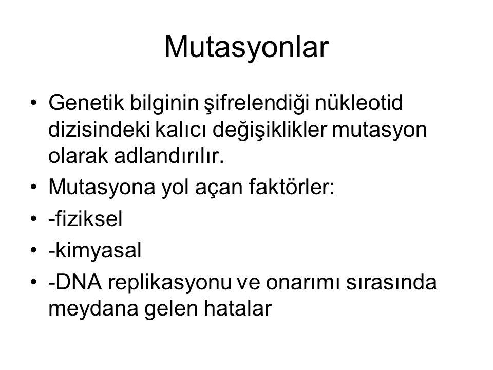 Mutasyonlar Genetik bilginin şifrelendiği nükleotid dizisindeki kalıcı değişiklikler mutasyon olarak adlandırılır.