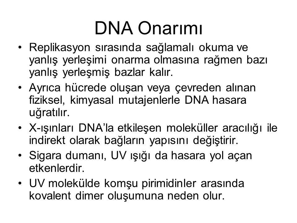 DNA Onarımı Replikasyon sırasında sağlamalı okuma ve yanlış yerleşimi onarma olmasına rağmen bazı yanlış yerleşmiş bazlar kalır.