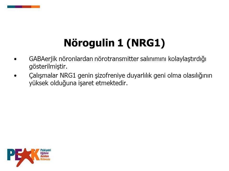 Nörogulin 1 (NRG1) GABAerjik nöronlardan nörotransmitter salınımını kolaylaştırdığı gösterilmiştir. Çalışmalar NRG1 genin şizofreniye duyarlılık geni