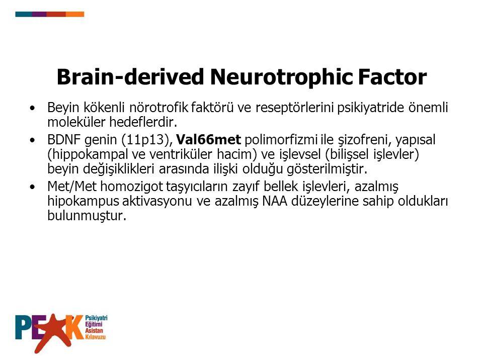 Brain-derived Neurotrophic Factor Beyin kökenli nörotrofik faktörü ve reseptörlerini psikiyatride önemli moleküler hedeflerdir. BDNF genin (11p13), Va
