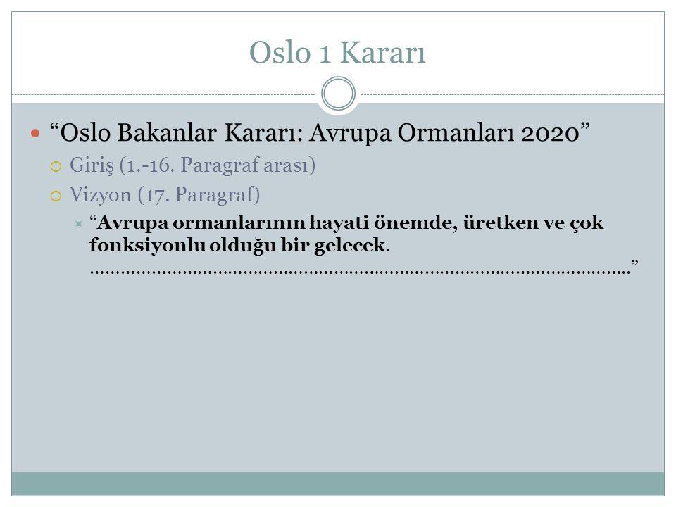"""Oslo 1 Kararı """"Oslo Bakanlar Kararı: Avrupa Ormanları 2020""""  Giriş (1.-16. Paragraf arası)  Vizyon (17. Paragraf)  """"Avrupa ormanlarının hayati önem"""