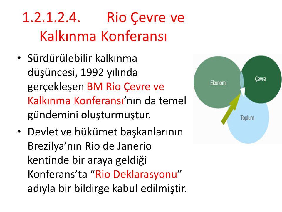 1.2.1.2.4.Rio Çevre ve Kalkınma Konferansı Sürdürülebilir kalkınma düşüncesi, 1992 yılında gerçekleşen BM Rio Çevre ve Kalkınma Konferansı'nın da temel gündemini oluşturmuştur.