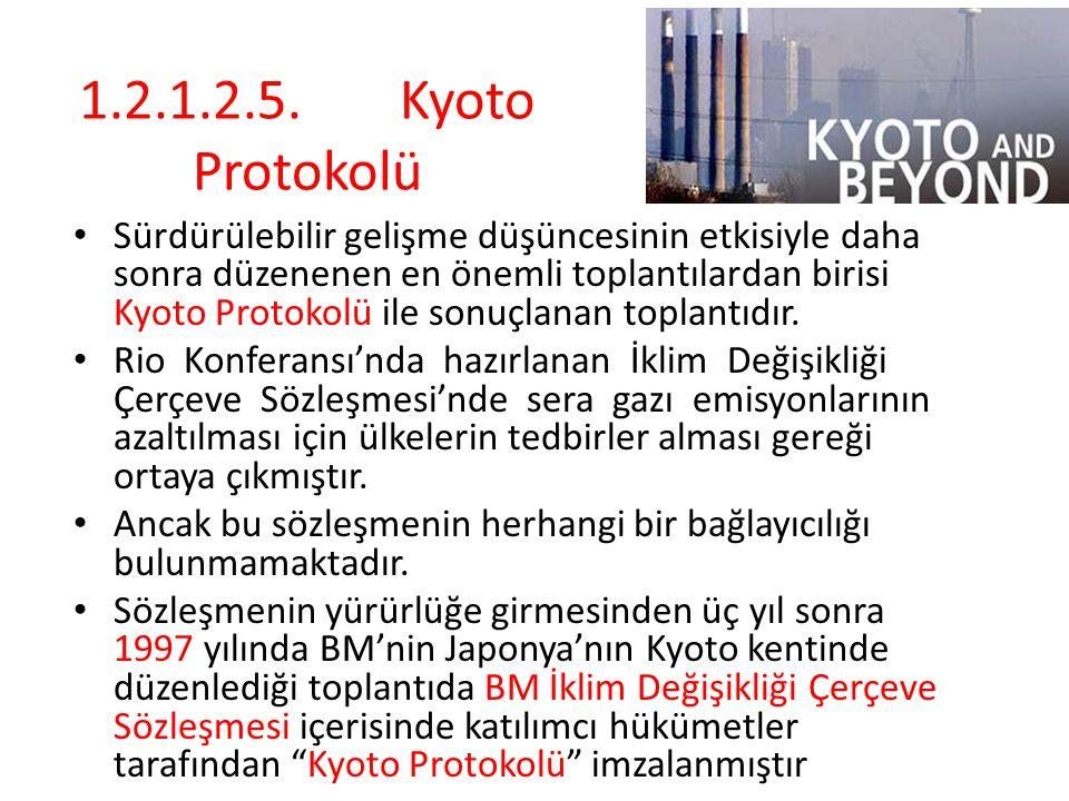 1.2.1.2.5.Kyoto Protokolü Sürdürülebilir gelişme düşüncesinin etkisiyle daha sonra düzenenen en önemli toplantılardan birisi Kyoto Protokolü ile sonuçlanan toplantıdır.