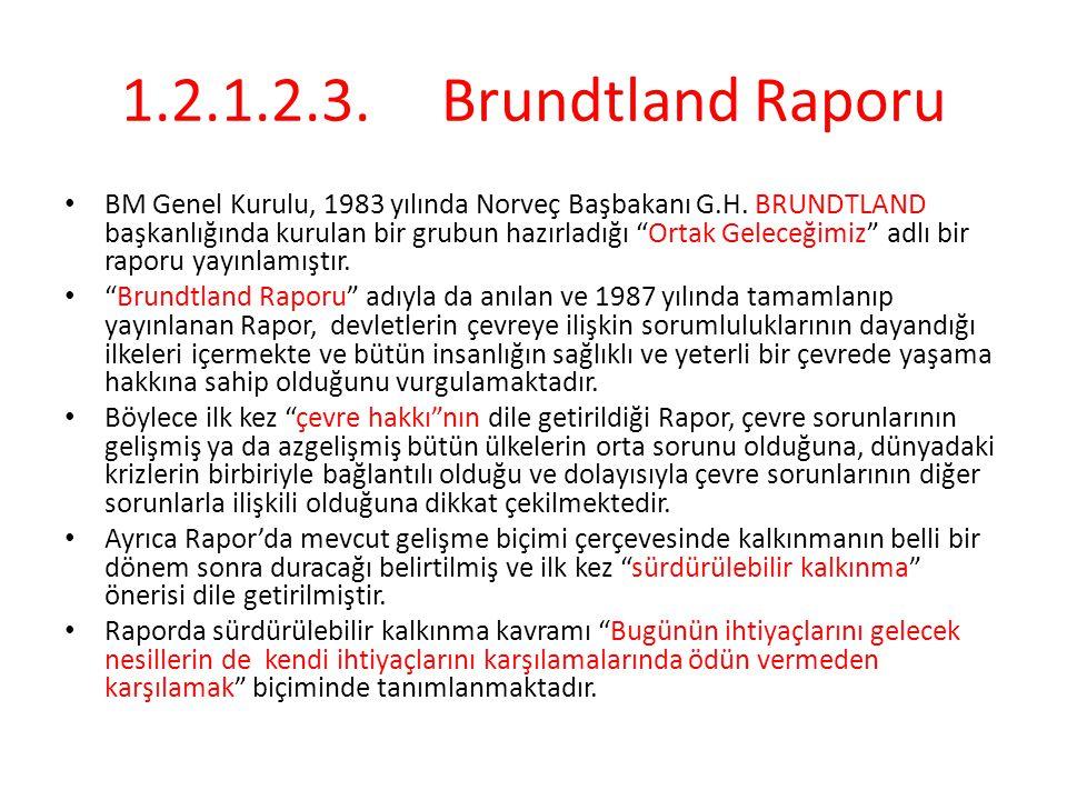 1.2.1.2.3.Brundtland Raporu BM Genel Kurulu, 1983 yılında Norveç Başbakanı G.H.