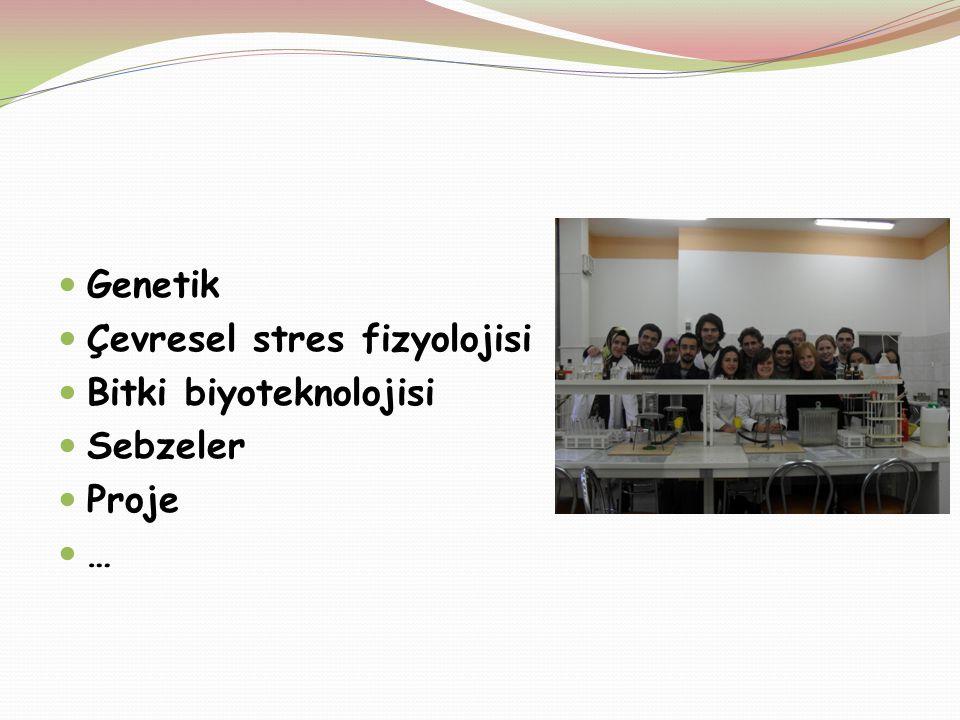 Genetik Çevresel stres fizyolojisi Bitki biyoteknolojisi Sebzeler Proje …