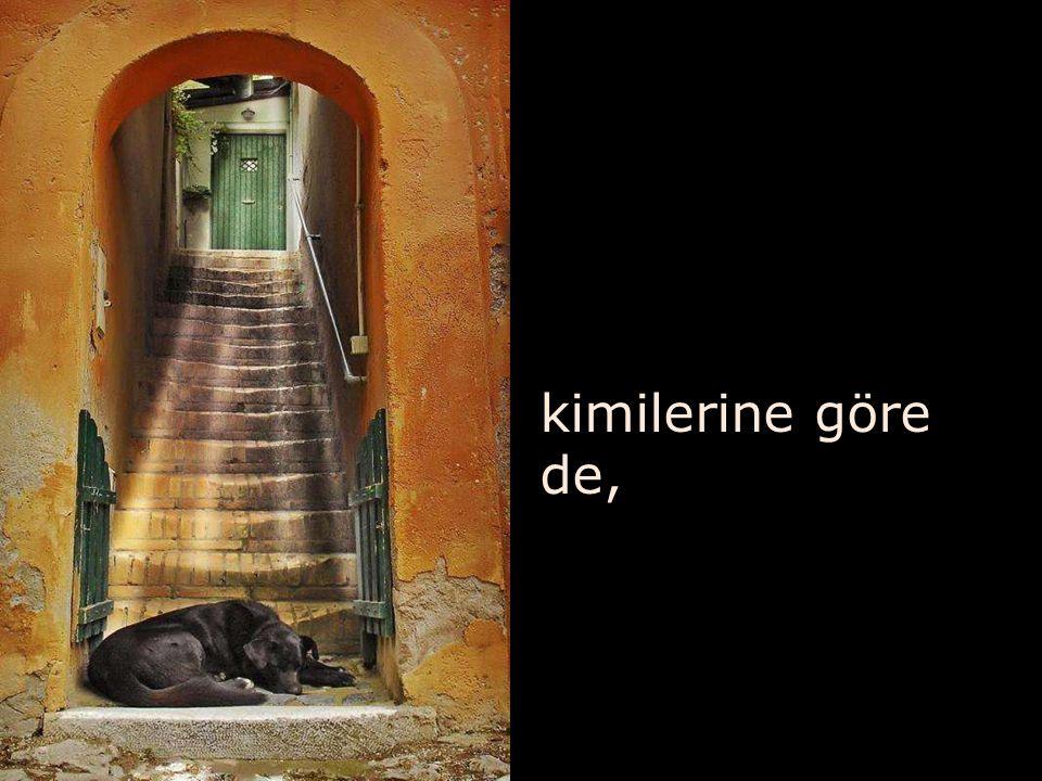 vazgeçilmezdir merdivenler…