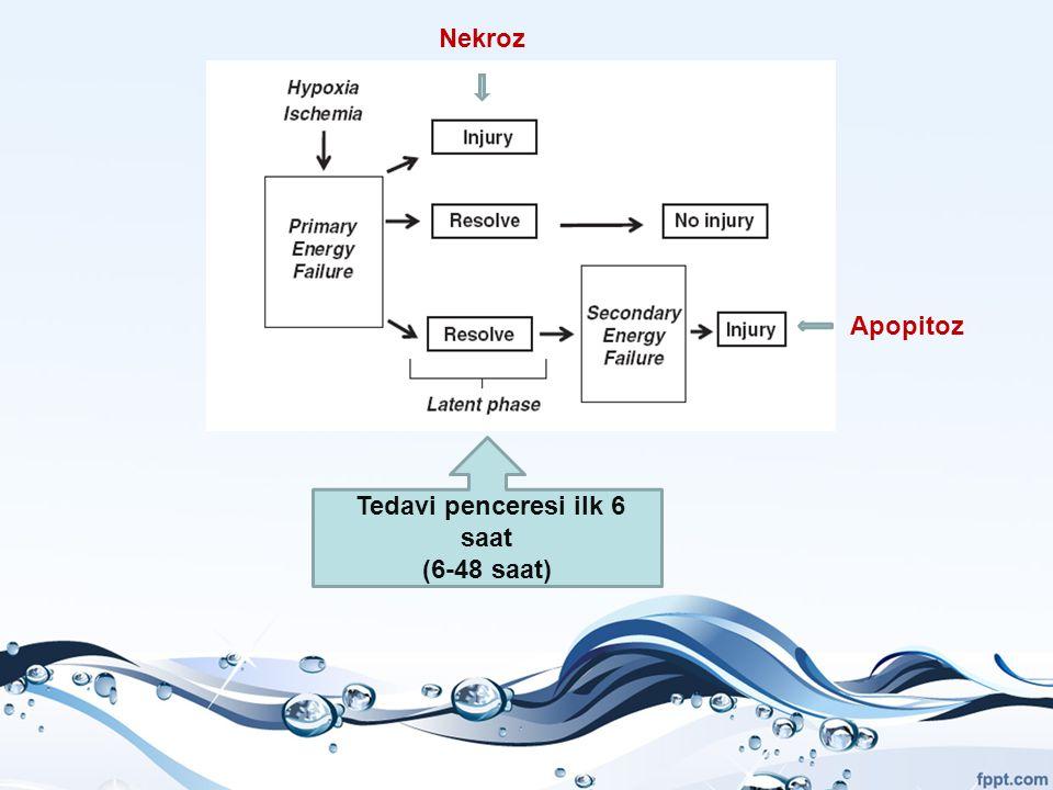 Nekroz Apopitoz Tedavi penceresi ilk 6 saat (6-48 saat)