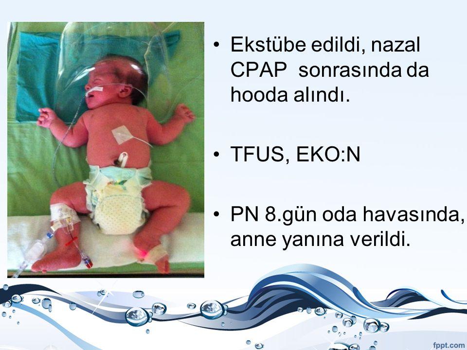 Ekstübe edildi, nazal CPAP sonrasında da hooda alındı. TFUS, EKO:N PN 8.gün oda havasında, anne yanına verildi.