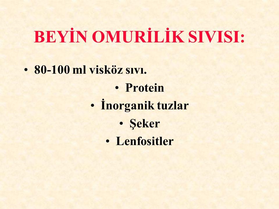 BEYİN OMURİLİK SIVISI: 80-100 ml visköz sıvı. Protein İnorganik tuzlar Şeker Lenfositler