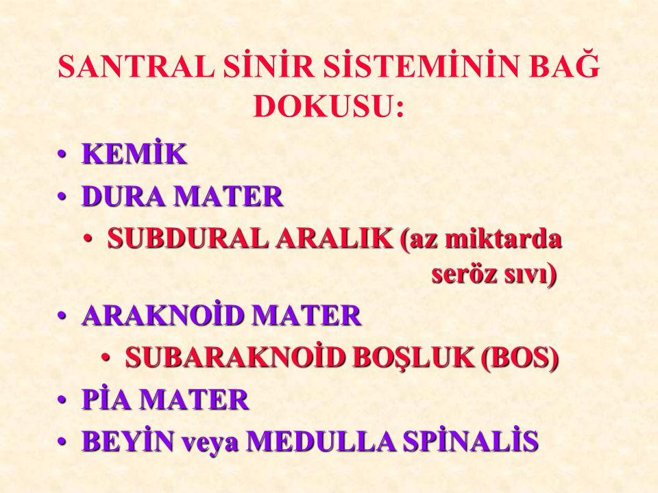 SANTRAL SİNİR SİSTEMİNİN BAĞ DOKUSU: KEMİKKEMİK DURA MATERDURA MATER SUBDURAL ARALIK (az miktarda seröz sıvı)SUBDURAL ARALIK (az miktarda seröz sıvı)