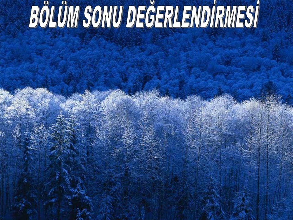 ÇİLYAD, ŞOK VE KARDİYAK ARREST TEDAVİSİ 44