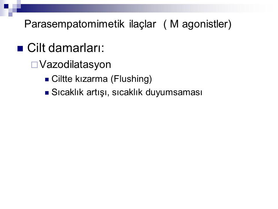 Parasempatomimetik ilaçlar ( M agonistler) Cilt damarları:  Vazodilatasyon Ciltte kızarma (Flushing) Sıcaklık artışı, sıcaklık duyumsaması