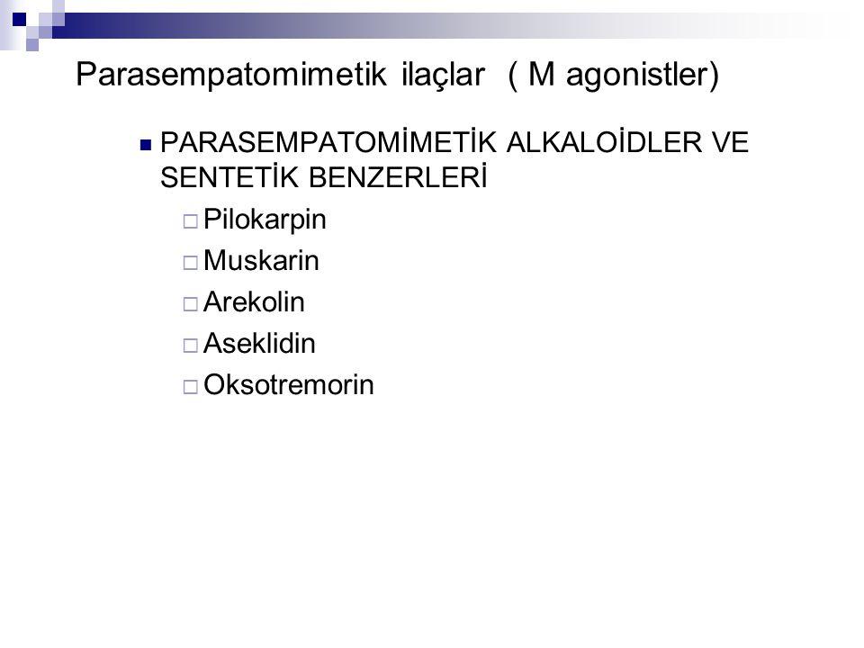 Parasempatomimetik ilaçlar ( M agonistler) PARASEMPATOMİMETİK ALKALOİDLER VE SENTETİK BENZERLERİ  Pilokarpin  Muskarin  Arekolin  Aseklidin  Okso