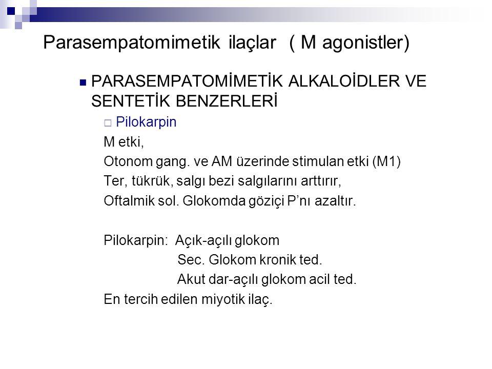 Parasempatomimetik ilaçlar ( M agonistler) PARASEMPATOMİMETİK ALKALOİDLER VE SENTETİK BENZERLERİ  Pilokarpin M etki, Otonom gang. ve AM üzerinde stim