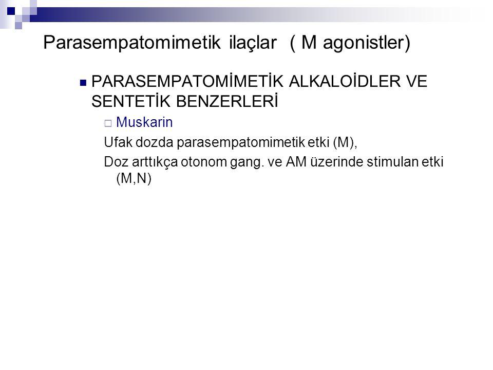 Parasempatomimetik ilaçlar ( M agonistler) PARASEMPATOMİMETİK ALKALOİDLER VE SENTETİK BENZERLERİ  Muskarin Ufak dozda parasempatomimetik etki (M), Do