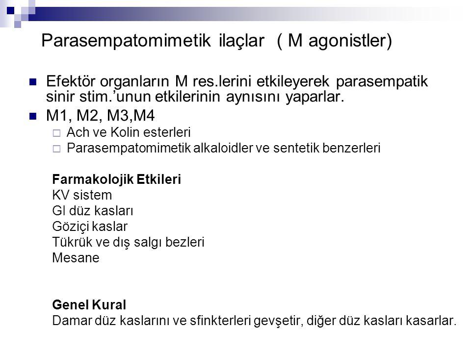 Parasempatomimetik ilaçlar ( M agonistler) Efektör organların M res.lerini etkileyerek parasempatik sinir stim.'unun etkilerinin aynısını yaparlar. M1