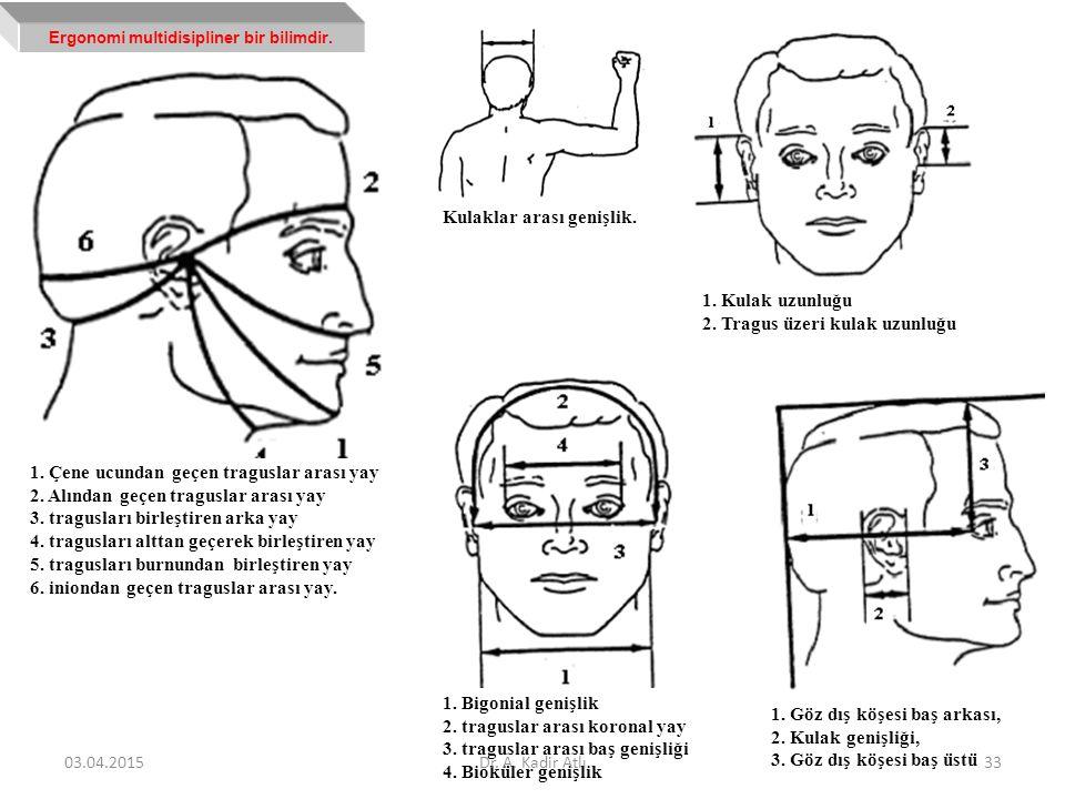 Kulaklar arası genişlik. 1. Çene ucundan geçen traguslar arası yay 2. Alından geçen traguslar arası yay 3. tragusları birleştiren arka yay 4. tragusla