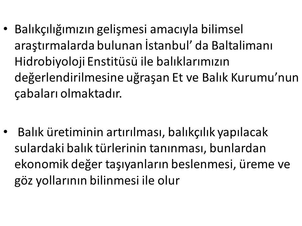 Balıkçılığımızın gelişmesi amacıyla bilimsel araştırmalarda bulunan İstanbul' da Baltalimanı Hidrobiyoloji Enstitüsü ile balıklarımızın değerlendirilm