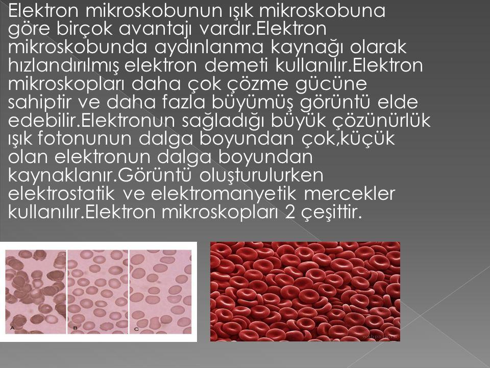 Elektron mikroskobunun ışık mikroskobuna göre birçok avantajı vardır.Elektron mikroskobunda aydınlanma kaynağı olarak hızlandırılmış elektron demeti