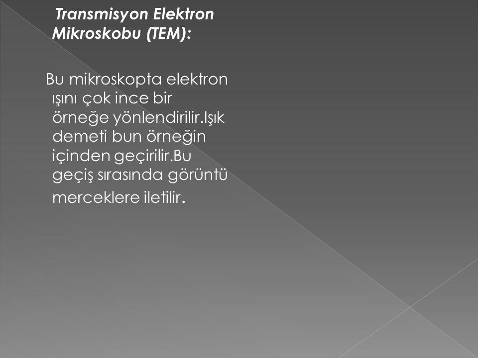 Transmisyon Elektron Mikroskobu (TEM): Bu mikroskopta elektron ışını çok ince bir örneğe yönlendirilir.Işık demeti bun örneğin içinden geçirilir.Bu ge