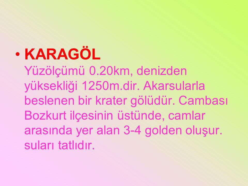 KARAGÖL Yüzölçümü 0.20km, denizden yüksekliği 1250m.dir. Akarsularla beslenen bir krater gölüdür. Cambası Bozkurt ilçesinin üstünde, camlar arasında y