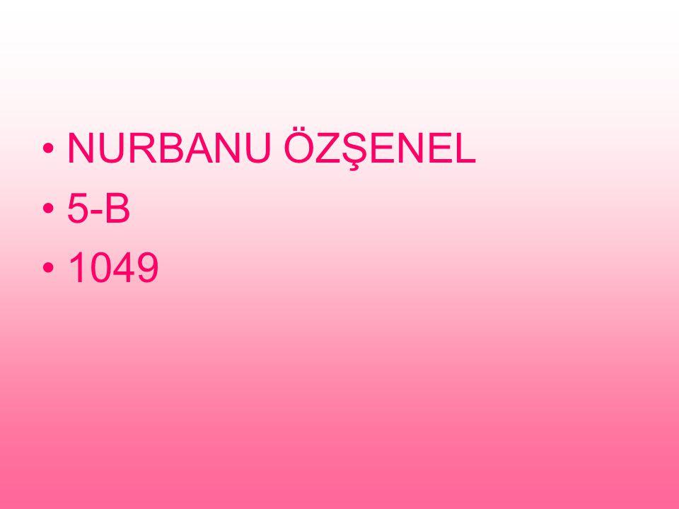 NURBANU ÖZŞENEL 5-B 1049