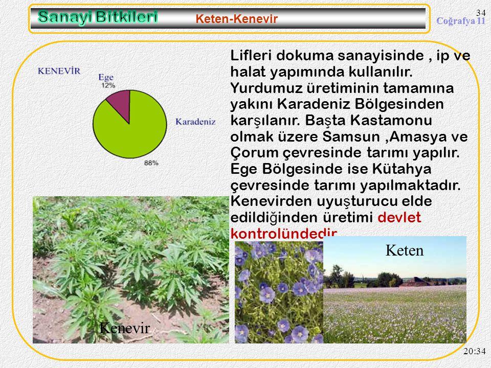 33 Yeti ş me Ko ş ulları : Türkiye'nin iklim ko ş ullarına en iyi uyum sa ğ lamı ş bir endüstri bitkisidir. Çimlenme ve büyüme döneminde bol su ister.