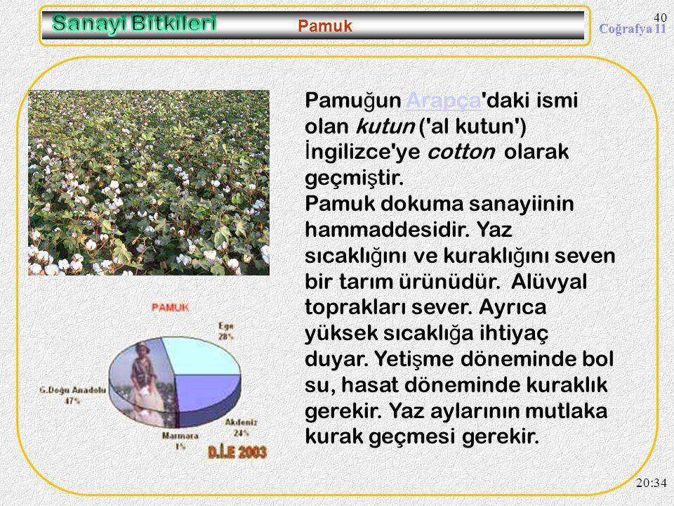 39 Şeker Pancarı 20:36 Kıyı bölgelerimizde tarımı yapılmaz. Sebebi buralarda daha fazla gelir getiren ürünlere öncelik verilmesidir.