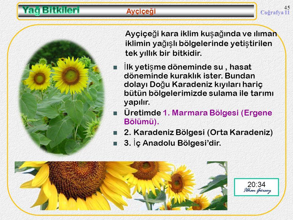 44 Zeytin 20:36 Ayrıca Do ğ u Karadeniz'de Çoruh vadi olu ğ unda (Artvin) ve G.Do ğ u Anadolu Bölgesi'nde G.Antep çevresinde tarımı yapılır. Zeytinin