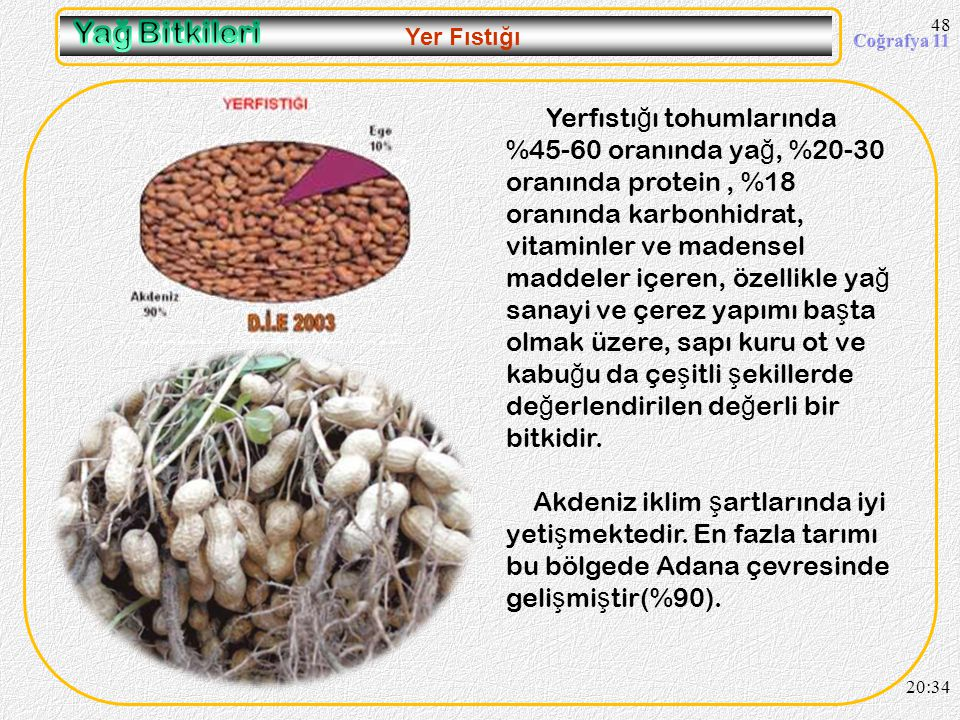 47 Soya Fasulyesi 20:36 Önceleri daha çok Do ğ u Karadeniz'de Ordu- Giresun çevresinde tarımı yapılırdı. 1982 yılından sonra ya ğ sanayisinde kullanıl