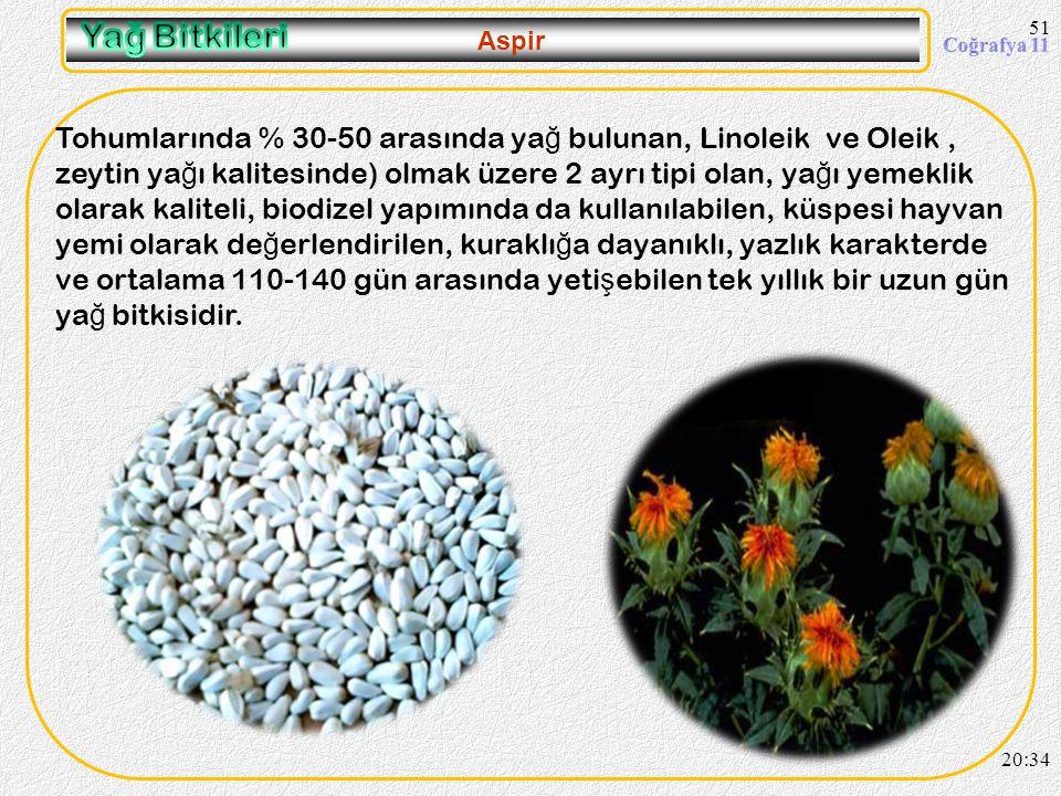 50 Kolza (Kanola) 20:36 Ülkemizde kanola tarımına tekrar(1960 larda göçmenler Trakyada ekimini yaptılar) son yıllarda Tekirda ğ, Edirne, Kırklareli ve